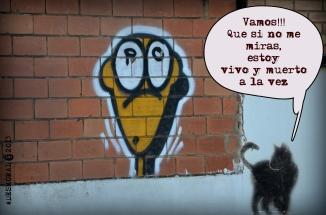 El gato.... de la calle
